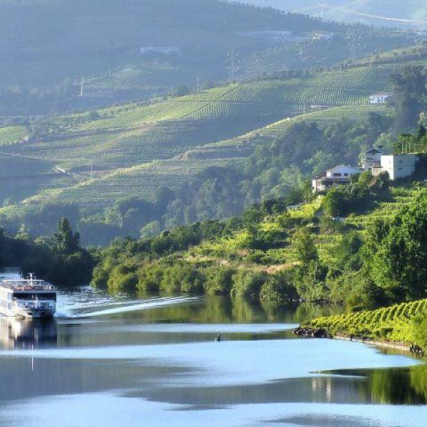 Cruzeiros no Douro